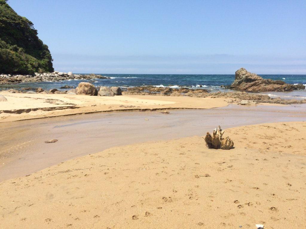 糸島の海 犬と海で遊ぶ