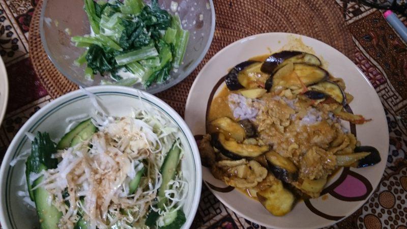 お米食べちゃう糖質制限ダイエットやってみた 糖質制限カレー
