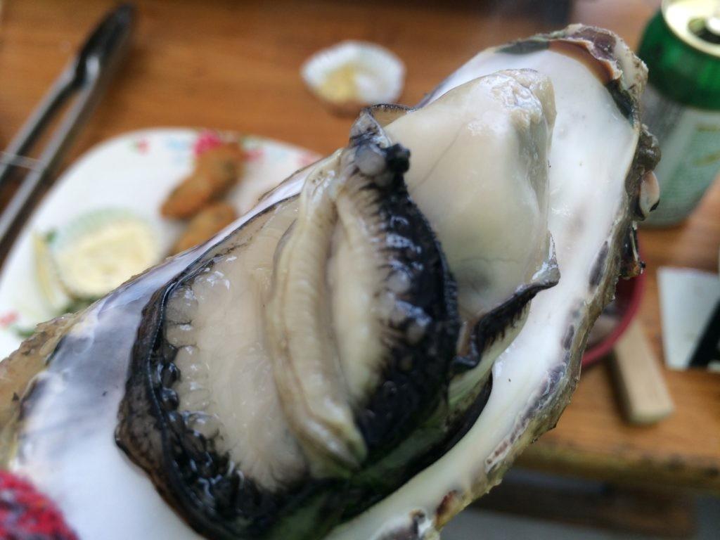 糸島 牡蠣小屋 牡蠣