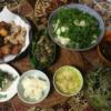 15日目唐揚げ 軟骨揚げ お刺身 大葉サラダ 豆腐 お味噌汁 キャベツシラタキご