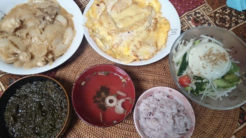 6日目 白滝大根飯 モツ玉ねぎ炒め 鳥胸ピカタ 糸島モズク ダイエットやってみた
